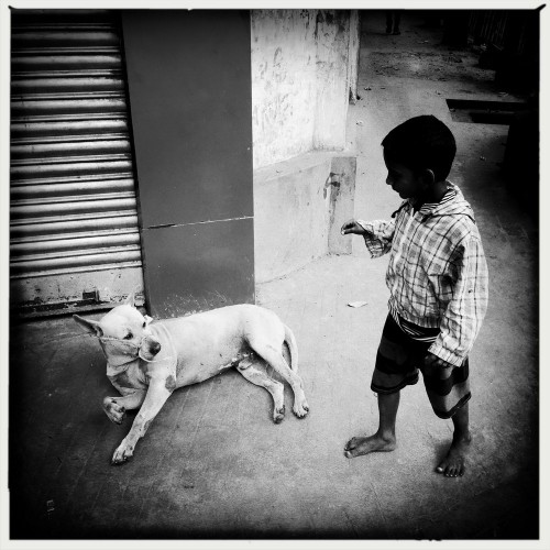 jan-sibik-indie-kalkata-2015-3